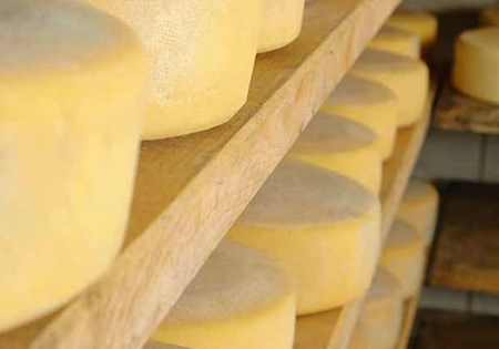 Nutrilac® FastRipe reduces cheese storage time, cuts costs brochure
